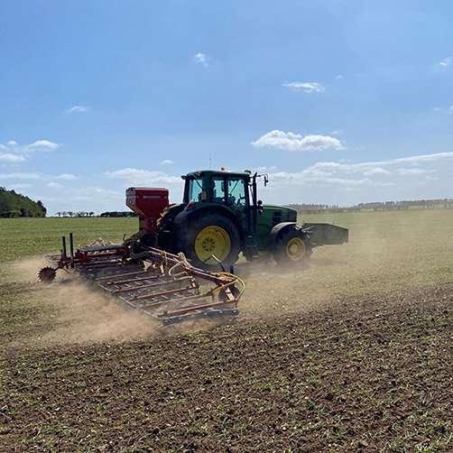 Farming at Fring